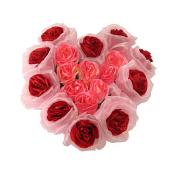 Long Lasting – Heart Shaped Arrangement Red n Pink Roses
