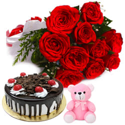 Impressive Small Teddy with Red Roses Bunch N Black Forest Cake