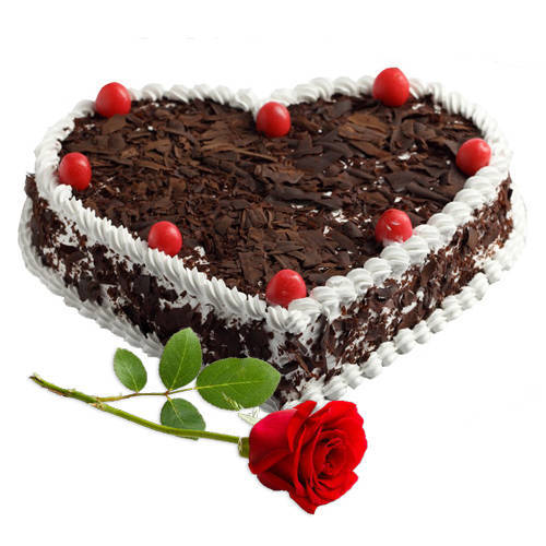 Perfect Combo of Heart Shape Black Forest Cake N Single Rose