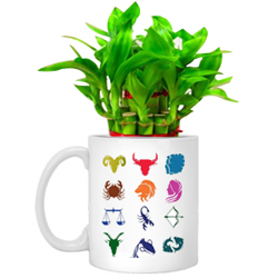 Enchanting Gift of Sun Sign Mug with Lucky Bamboo Tree