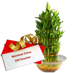 Amazing Gift of Rs. 1000/- worth of Mainland China Gift Voucher and a Bowl of Lucky Bamboo