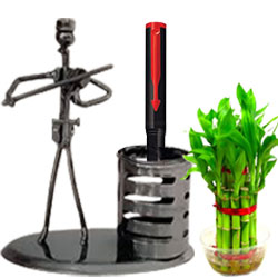 Eye-Catching Gift of Designer Stand with Bamboo Plant N Parker Pen