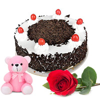 Gift Black Forest Cake with Rose and Teddy Online