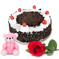 Great Birth-Day Gift of Single Rose with Teddy and Black Forest Cake