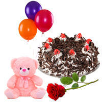Online Order Black Forest Cake with Rose, Teddy and Balloons