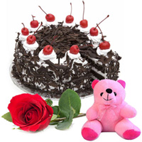 Send Online Black Forest Cake with Teddy and Rose