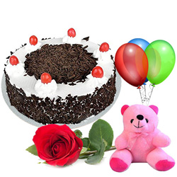 Lovely Single Rose with Teddy, Balloons and Black Forest Cake Combo