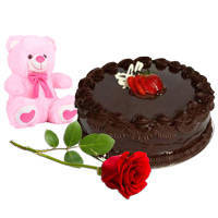 Order Red Rose with Teddy N Chocolate Cake Online