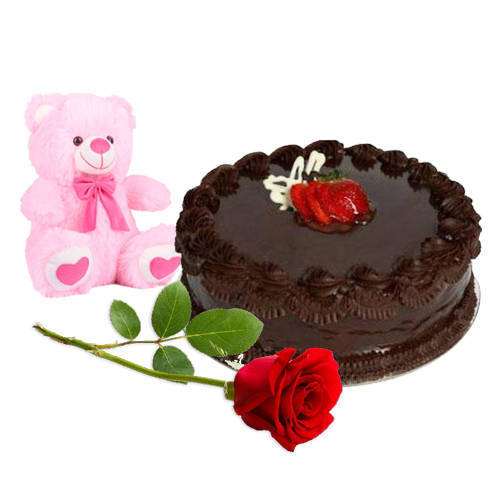 Fresh Cut Red Rose with Teddy N Chocolate Cake