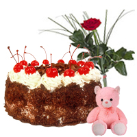 Delectable 1/2 Kg. Black Forest Cake with Cute Teddy and Red Rose