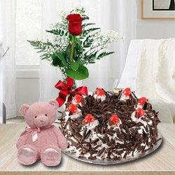 Book Black Forest Cake with Red Rose and a Teddy Online