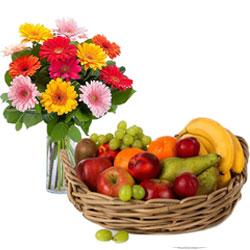 Delightful Combo Pack of Fresh Fruits Basket with Gerberas in a vase