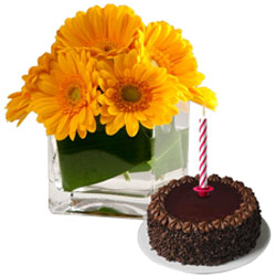Delightful Mid-night Combo of Chocolate Cake and Candles with Vibrant Gerberas in Vase