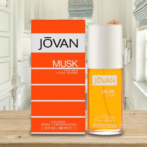 Special Touch Up with Jovan Musk Cologne for Men