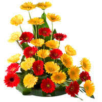 Stunning Mixed Gerberas Arrangement