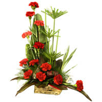 Beautiful Arrangement of Carnations Online