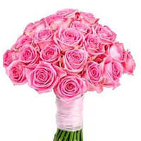 Perfect Selection of Pink Roses online