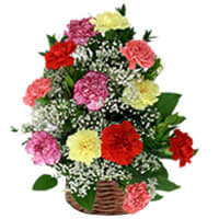 Basket Arrangement of Colorful Carnations