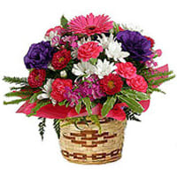 Gift of Assorted Florals Bamboo Pot Arrangement