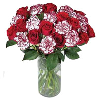 Gift of Roses N Carnations Bunch Online
