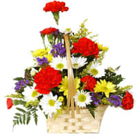 Fresh Arrangement of Carnations and Gerberas