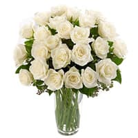 Beautiful collection of White or Creamy Roses with a Vase