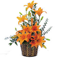 Gift of Orange Lilies Basket