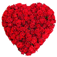Charming 150 Dutch Red Roses with heart shape