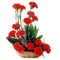 Beautiful Basket of Red Carnations