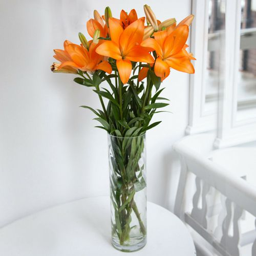 Fresh-Cut Lilies in a Glass Vase