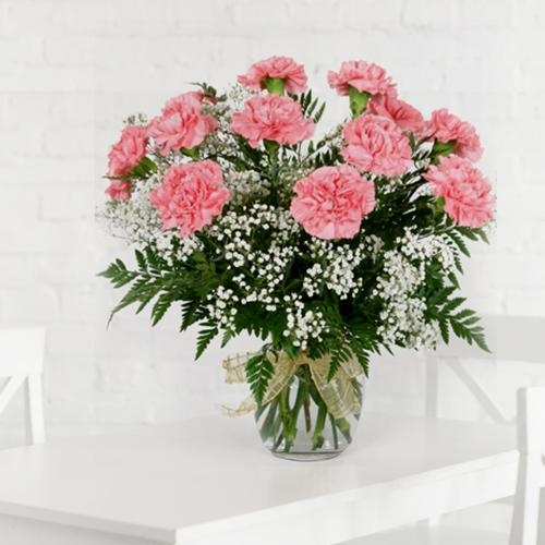 Glorious Pink Carnations in Vase