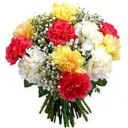 Impressive Bunch of Assorted Carnations