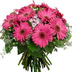 Elegant Bouquet of Pink Gerberas