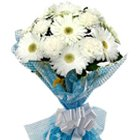 Elegant Bunch of White Gerberas with Fillers
