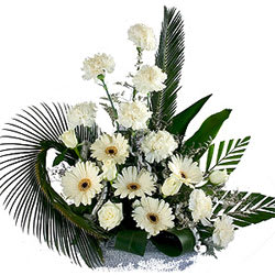 Gift of Carnations N Gerberas Bouquet
