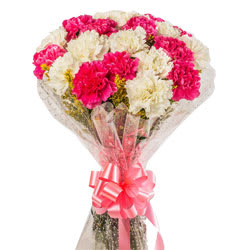 Ravishing Bunch of White N Pink Carnations