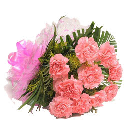 Stunning Bunch of Pink Carnations