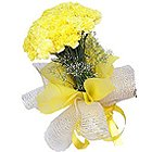 Distinctive Collection of Carnations in Yellow Colour