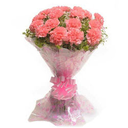 Hand-picked Bunch of Pink Carnations