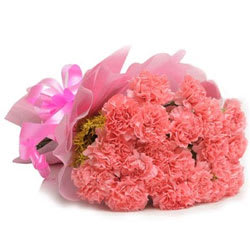 Tender Pink Carnations Bunch