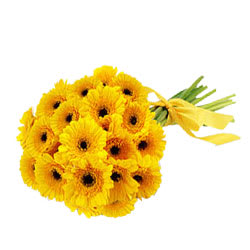 Delightful Yellow Gerberas Bouquet