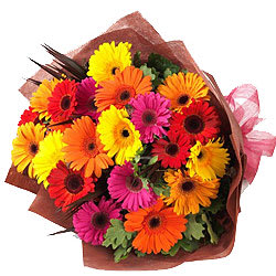 Dazzling Bouquet of Assorted Gerberas