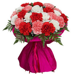 Delightful Bouquet of Colorful Carnations