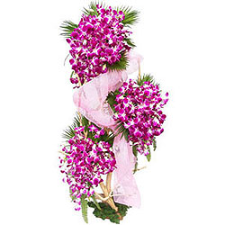 Surprise Three-Tier Orchids Arrangement