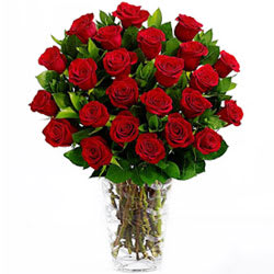 Charming Red Roses in a Vase
