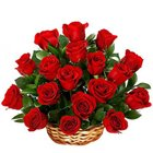 Embracing Love Red Roses in a Basket