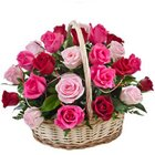 Captivating Shades of Life Fifteen Pink N Red Roses Basket