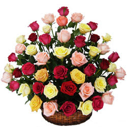 Romantic Collection of Mixed Roses in a Basket