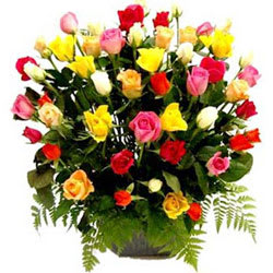 Beautiful Basket of Assorted Roses