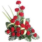 Gorgeous Display of Carnation in Red Colour